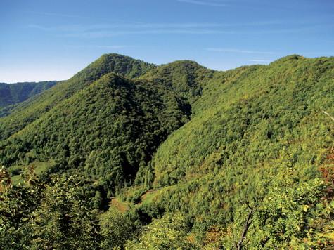 dan planina